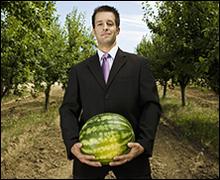 Watermelon_viagra